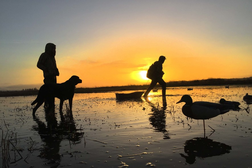 columbia basin guided waterfowl hunts (1)